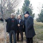 کوچه ۱۰ متری شهید والافر به خیابان حافظ مسیرگشایی میشود