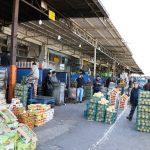 روزانه ۵ هزار تن محصولات کشاورزی در میدان میوه و تره بار تبریز عرضه می شود