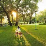فراخوان عمومی طراحی پارک باغشمال تبریز