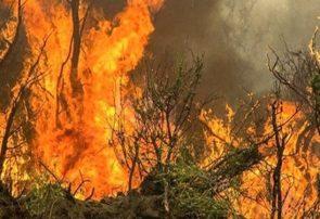 ۲۰ هزار هکتار از اراضی ملی آذربایجانشرقی در آتش سوخت