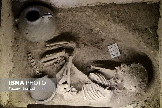 موزههای آذربایجانشرقی استانداردسازی میشود